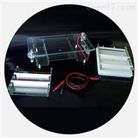 DYCP-31E琼脂糖水平电泳仪电泳槽