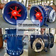 管道直连式安装800QGWZ全贯流潜水电泵
