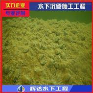 滁州市蛙人服务公司(相信我们技术)