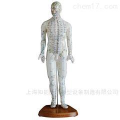 中医针灸技能训练模型