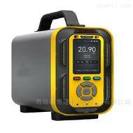 泵吸手提式六合一气体分析仪有毒有害