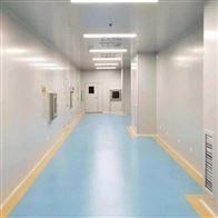 HZD日照洁净厂房工艺设计及布局
