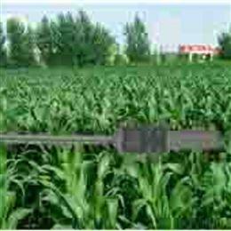 TP202手持式植物冠层分析仪