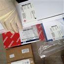 29168058GE代理销售商29168058