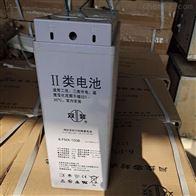 12V100AH双登密封铅酸蓄电池6-FMX-100B