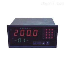 智能多路巡检控制仪 WP-MD80