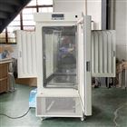 程序温湿度控制光照人工气候箱昆虫培养箱