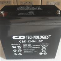 12V54AH大力神蓄电池C D12-54 LBT经销商