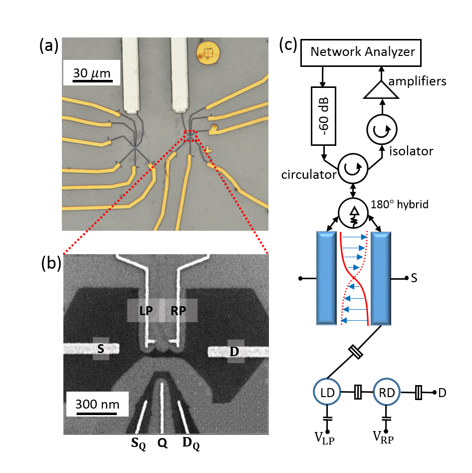 研究组在该石墨烯与超导复合结构上采用微波