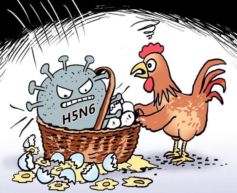 近日位于深圳的广东内伶仃福田国家级陆生野生动物疫
