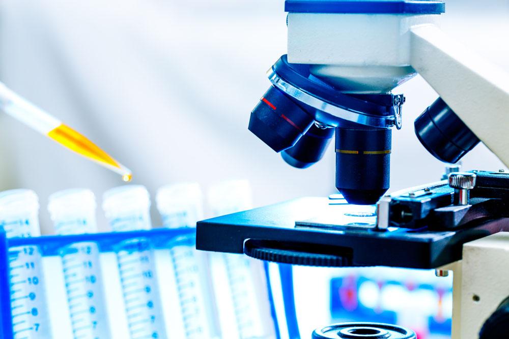 """荷兰人列文虎克改进了显微镜,也是第一个观察到细菌等微生物的人。他对显微镜的研究表现出极大的热情。他制造及收集了250多个显微镜和400多个透镜,最高可放大200-300倍。      显微镜的意义不仅在于向人类展现出了全新的""""微""""世界,也成为了人们攻克顽疾的好帮手。十九世纪八十年代,一位名叫RobertKoch的乡村医生发现了引起肺结核和霍乱的病菌。在一封给卡尔·蔡司的信中,Koch写道:""""我成功的一大部分原因应归功于您出色的显微镜。""""凭"""