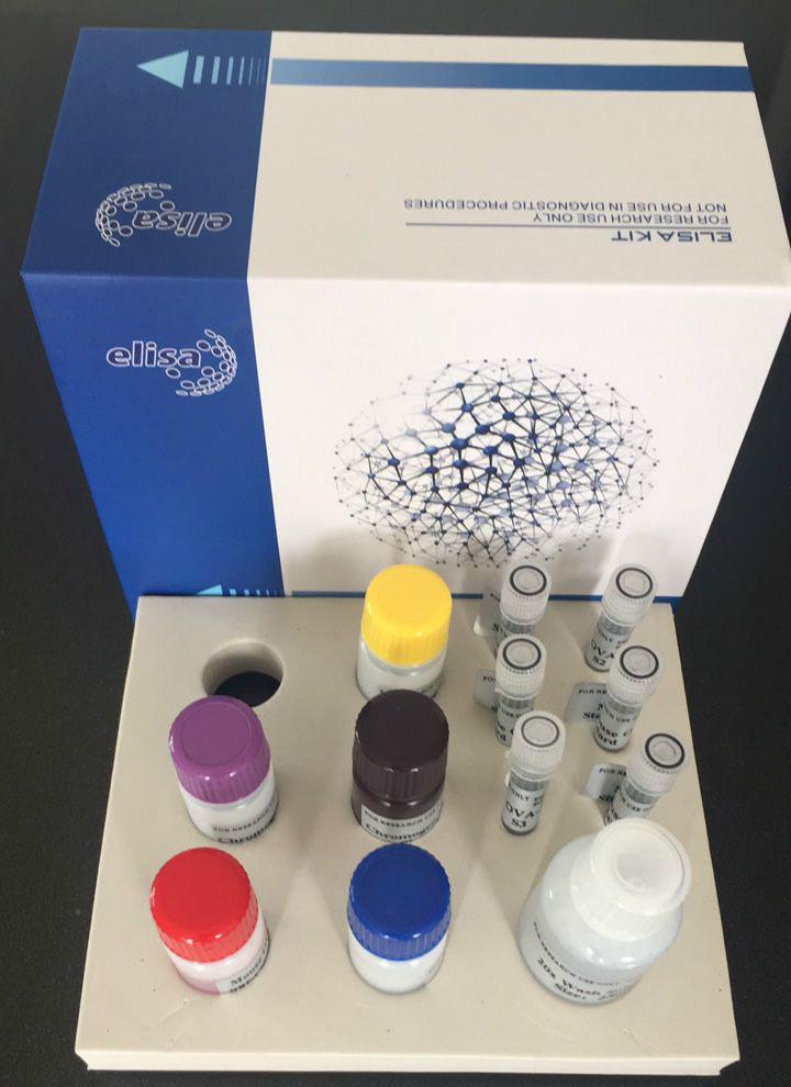 人17羟皮质类固醇(17-OHCS)ELISA检测试剂盒