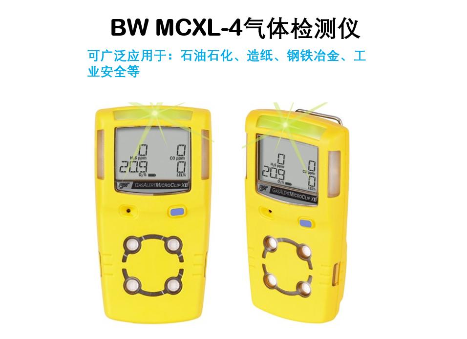 BW MCXL-4检测仪