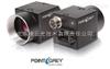 Blackfly高性价比PointGrey—POE网口相机-Blackfly系列
