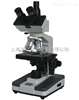 XSP-BM-6CA三目生物显微镜XSP-BM-6CA /上海彼爱姆显微镜XSP-BM-6CA