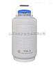 YDS-13液氮罐YDS-13/贮存型液氮生物容器/金凤液氮罐YDS-13