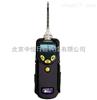 PGM-7340美国华瑞 PPBRAE 3000 VOC 检测仪