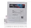Invitrogen S7567 SYBR® Green I核酸凝胶染料