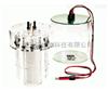 美国伯乐等电聚焦电泳仪175型管式凝胶电泳槽