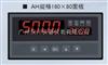 XSV/A液位/容量(重量)显示控制仪