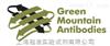 Green Mountain Antibodies 特约代理