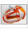 双背电工安全带 五点式电工安全带 双背五点式电工安全带 但保险双保险电工安全带