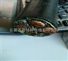 YJV-T、VV22-T铜芯导体电力电缆