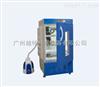 LRH-100-YG药物稳定性试验箱(发泡)