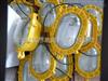 BPE8120-70W吊链式内场防爆强光应急灯