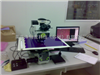 INFINUO电子材料图像分析软件