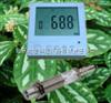 BX-HWJ02红外叶面温度传感器