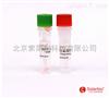 CA1410|活性氧检测试剂盒   solarbio 细胞检测试剂