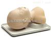 婴儿气道管理模型1