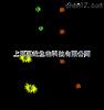 荧光定量PCR检测厂家